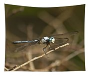 Blue Dasher 8769 Tapestry