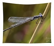 Blue Dasher Tapestry