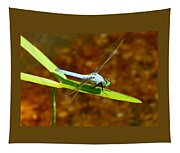 Blue Dasher Dragonfly Tapestry