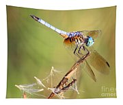 Blue Dasher On Twig Tapestry