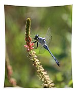 Blue Dragonfly On Pink Flower Tapestry