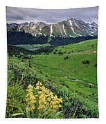 Blue Grouse Pass, Willmore Wilderness Tapestry