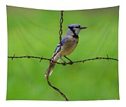 Blue Jay On Crossed Wire Tapestry