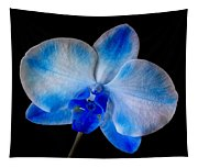 Blue Orchid Bloom Tapestry