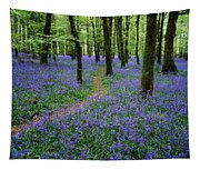 Bluebell Wood, Near Boyle, Co Tapestry
