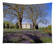 Bluebells In The Pleasure Grounds, Emo Tapestry