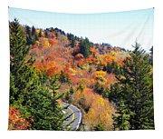 Blueridge Parkway View Near Hwy 215 Tapestry