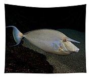 Bluespine Unicornfish Tapestry