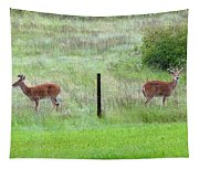 Bookend Twin Bucks Tapestry