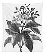 Botany: Cinnamon Tree Tapestry