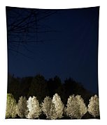 Bradford Pear Trees, Tennessee, Usa Tapestry