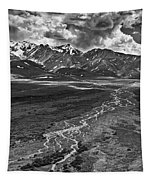 Braided River Tapestry