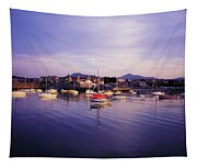 Bray Harbour, Co Wicklow, Ireland Tapestry