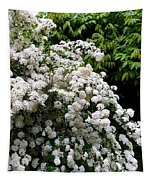 Bridal Veil Blossoms Tapestry