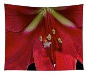 Bright Rose Amaryllis Tapestry