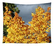 Brilliance Before The Storm Tapestry