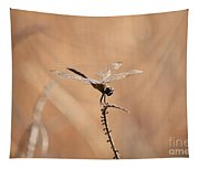 Brown Dragonfly And Brown Reeds Tapestry