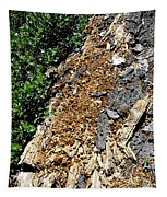 Bug Filled Bear Clawed Log Tapestry