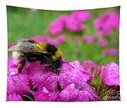 Bumble Bee Searching The Pink Flower Tapestry