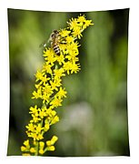 Busy Bee On Yellow Wildflower Tapestry