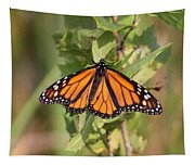Butterfly - Monarch - Resting Tapestry