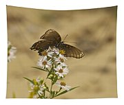 Butterfly 3322 Tapestry