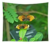 Butterfly Lovers Tapestry
