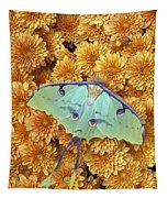 Butterfly On Flowers Tapestry