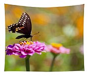 Butterfly On Pink Zinnia Tapestry