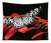 Butterfly On Red Tapestry