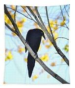 Bye Bye Blackbird  Tapestry