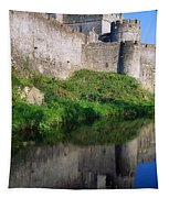 Cahir Castle, River Suir, County Tapestry