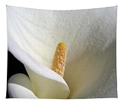 Cala Curve Tapestry