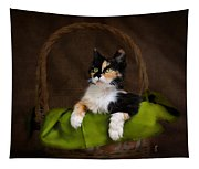 Calico Cat In Basket Tapestry
