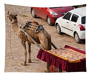 Camel Ready To Take Tourists For A Desert Safari Tapestry
