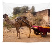 Camel Yoked To A Decorated Cart Meant For Carrying Passengers In India Tapestry