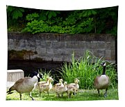 Canada Geese With Goslings Tapestry