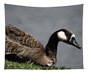 Canadian Goose Tapestry