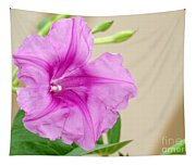 Candy Pink Morning Glory Flower Tapestry