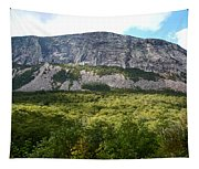 Cannon Cliff From Boise Rock New Hampshire Tapestry
