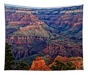 Canyon View X1 Tapestry