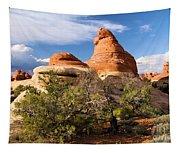Canyonlands Needles Tapestry