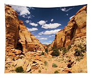 Capitol Reef Cohab Canyon Tapestry