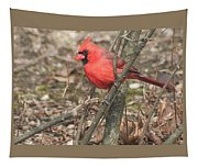 Cardinal In A Bush Tapestry