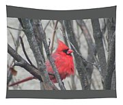 Cardinal With Fluffed Feathers Tapestry
