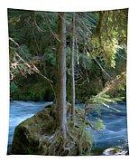 Cascade Rapids Tapestry