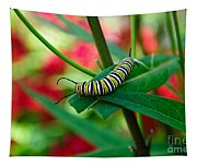 Caterpillar Before The Butterfly 1 Tapestry