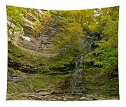 Cathedral Falls West Virginia Tapestry