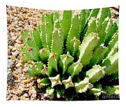 Cereus Peruvianis Cactus Tapestry