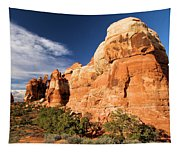 Chesler Park At Canyonlands National Park Tapestry